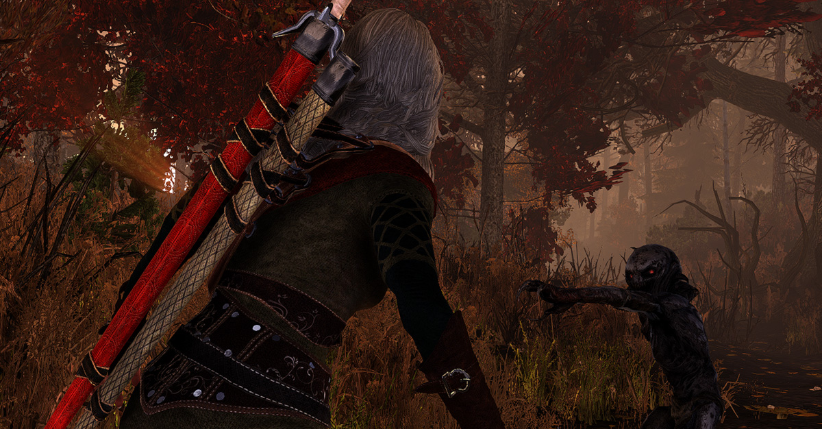 The Witcher 2: Farewell of the White Wolf