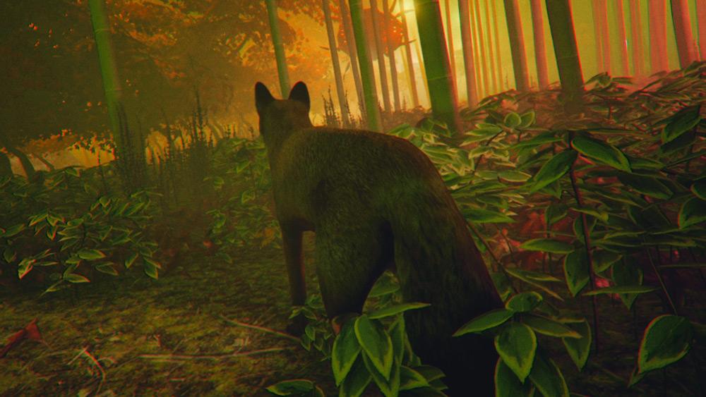 The End: Inari's Quest