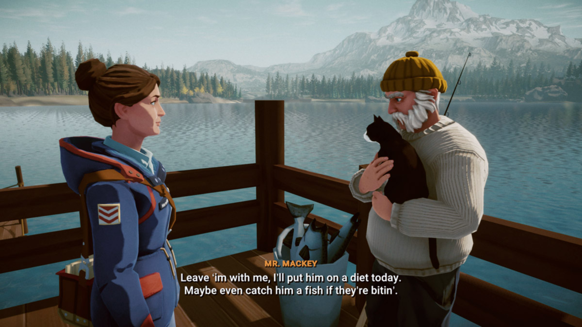 Обзор игры Lake